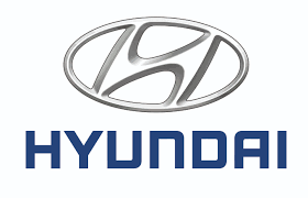 https://www.prografix.pl/wp-content/uploads/2019/01/Hyundai.png